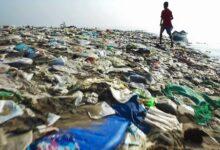 Photo of Documentales retratan el problema del plástico.
