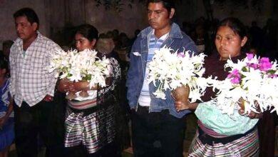Photo of Enfrentan indígenas Covid en el olvido