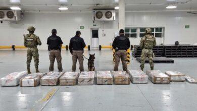 Photo of Desestima AMLO informe de EU sobre reducción de decomiso de droga en México