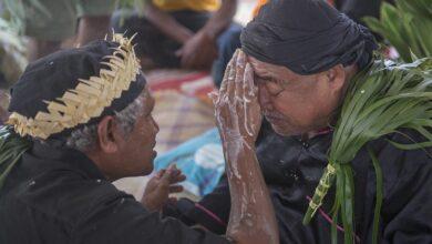 Photo of Sigue vigente la medicina tradicional en comunidades indígenas de Puebla