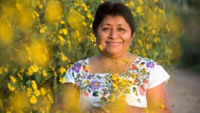 Photo of Apicultora Maya gana premio Ambiental Goldman por frenar la soya transgénica