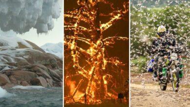 Photo of Catástrofes climáticas en 2020, cada vez más costosas según ONG