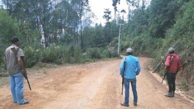 Photo of Pueblos de Guerrero se arman para proteger sus bosques