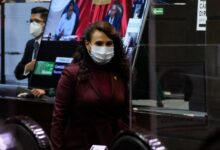 Photo of Morena en San Lázaro inicia investigación sobre ASF