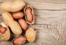 Photo of ¿Por qué debes comer cacahuates y cuánto es lo ideal?